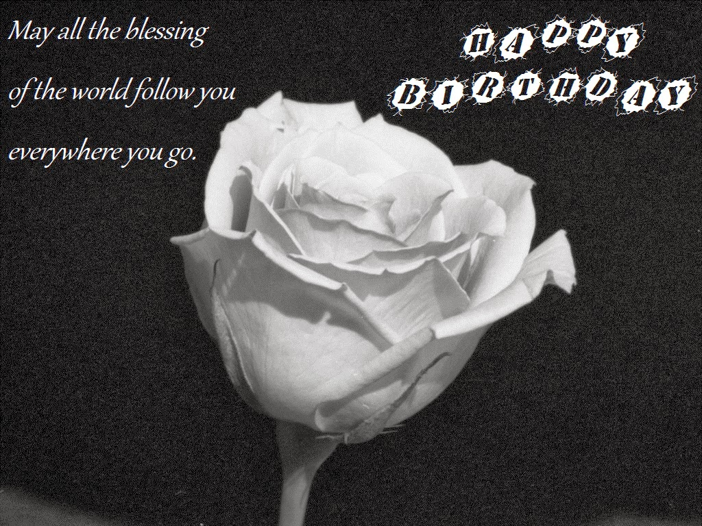White Rose Birthday Wishes Wallpapers Greetings Cards