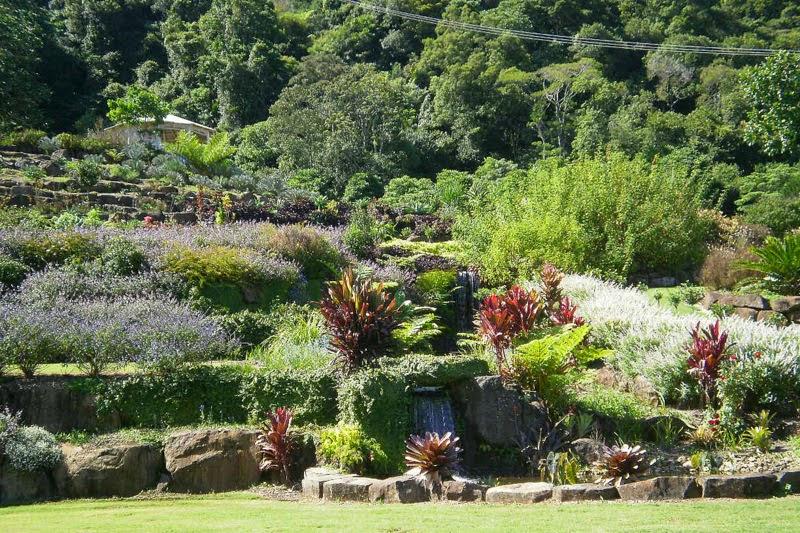 Maleny Botanical Gardens
