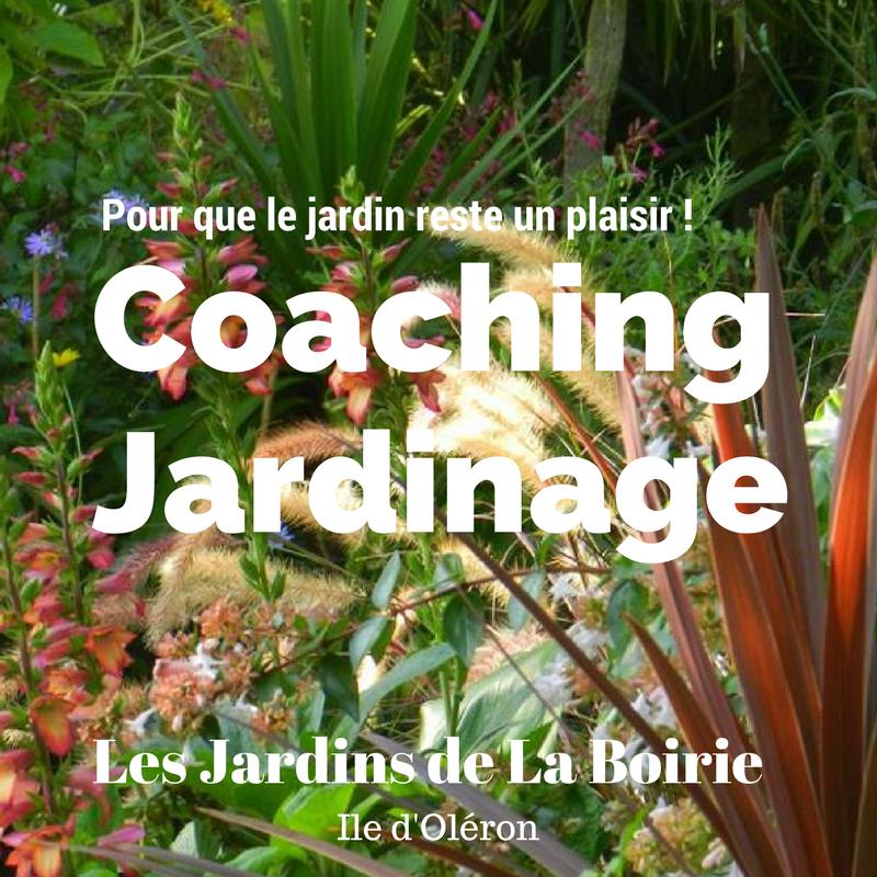 coaching jardin le d 39 ol ron les jardins botaniques de la boirie. Black Bedroom Furniture Sets. Home Design Ideas