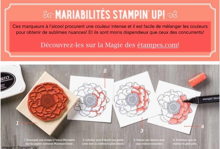 Mariabilites