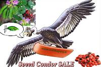 Logo Speed Condor Sale: conto alla rovescia per l'offerta lampo!