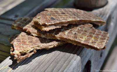 Dry-roasted duck strips pawtreats pawtree dog treats