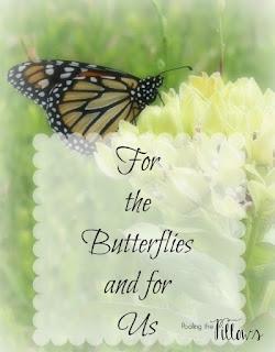butterflies, pollinators, butterfly gardens, Monarch butterflies, milkweed, gardening