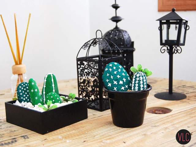 DIY cactus de pedra