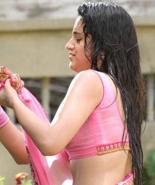 Actress Trisha Photo Gallery In Saree