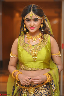 Sony Charishta in Green Choli Ghagra Transparent Chunni Ethnic Wear March 2017 021.JPG