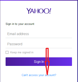 Lupa Password Email