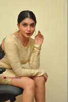 Actress Pooja Roshan Stills in Golden Short Dress at Box Movie Audio Launch  0086.JPG