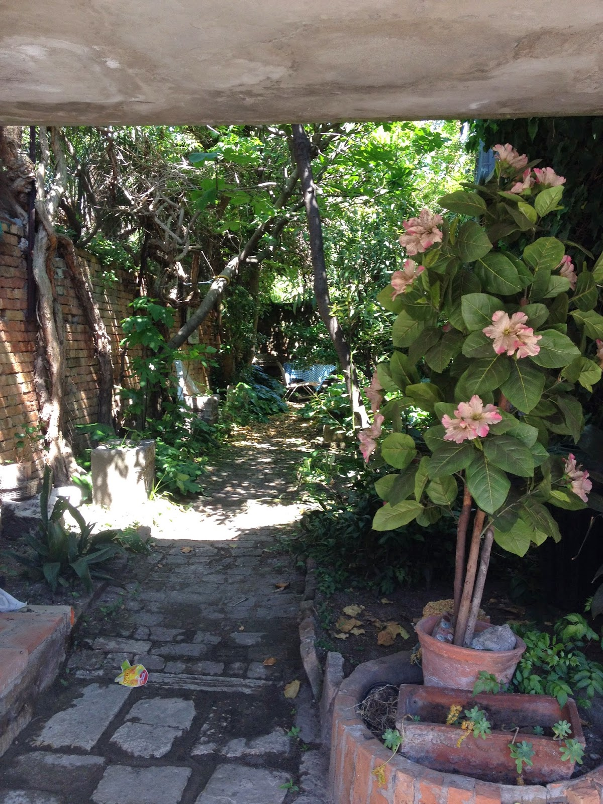 Garden Variety Tango