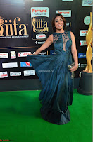 Shriya Saran in Beautiful Transparent Dark Gown IIFA Utsavam Awards 2017 026.JPG