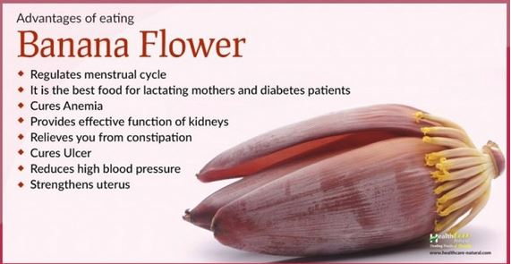 Did You Know That Eating Banana Flower Has These Amazing Health Benefits? READ HERE!