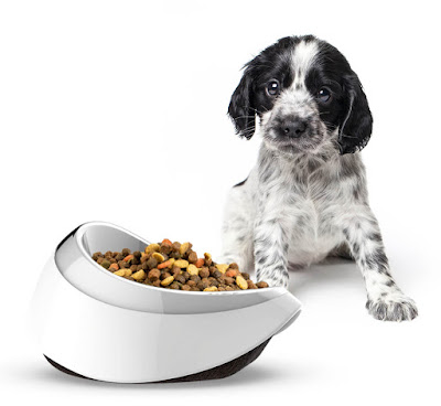 Puppy-staring-at-Petble-Smart-Bowl-full-of-kibble-pet-tech-gift-idea