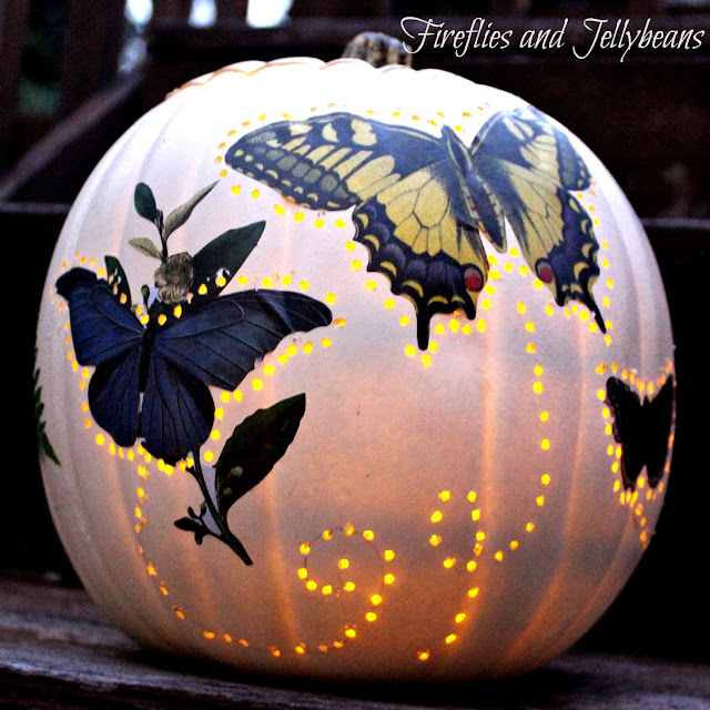 Fireflies And Jellybeans The Pumpkin Challenge 2 Easy