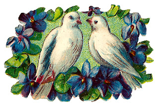 dove bird violets romantic image decorative clipart digital
