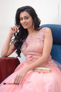 Actress Neha Hinge Stills in Pink Long Dress at Srivalli Teaser Launch  0061.JPG