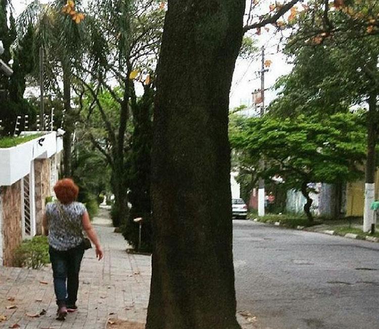 Caminhar pelo bairro é uma delícia =)