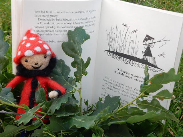 Lucyna Krzemieniecka, krasnoludek, książka dla dzieci