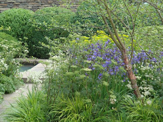 Tom Stuart-Smith, byliny leśne, ogród naturalistyczny