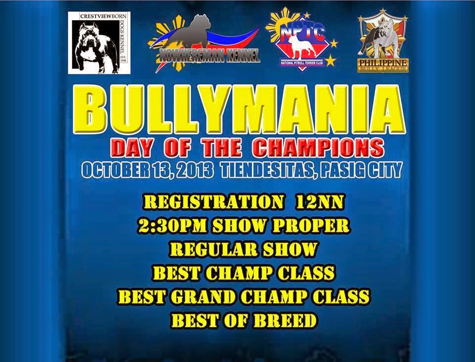 The Bully Quest Alliance (BQA)