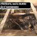 AMARGOSA: MATA-BURRO SEM MANUTENÇÃO É INCENDIADO EM ESTRADA VICINAL