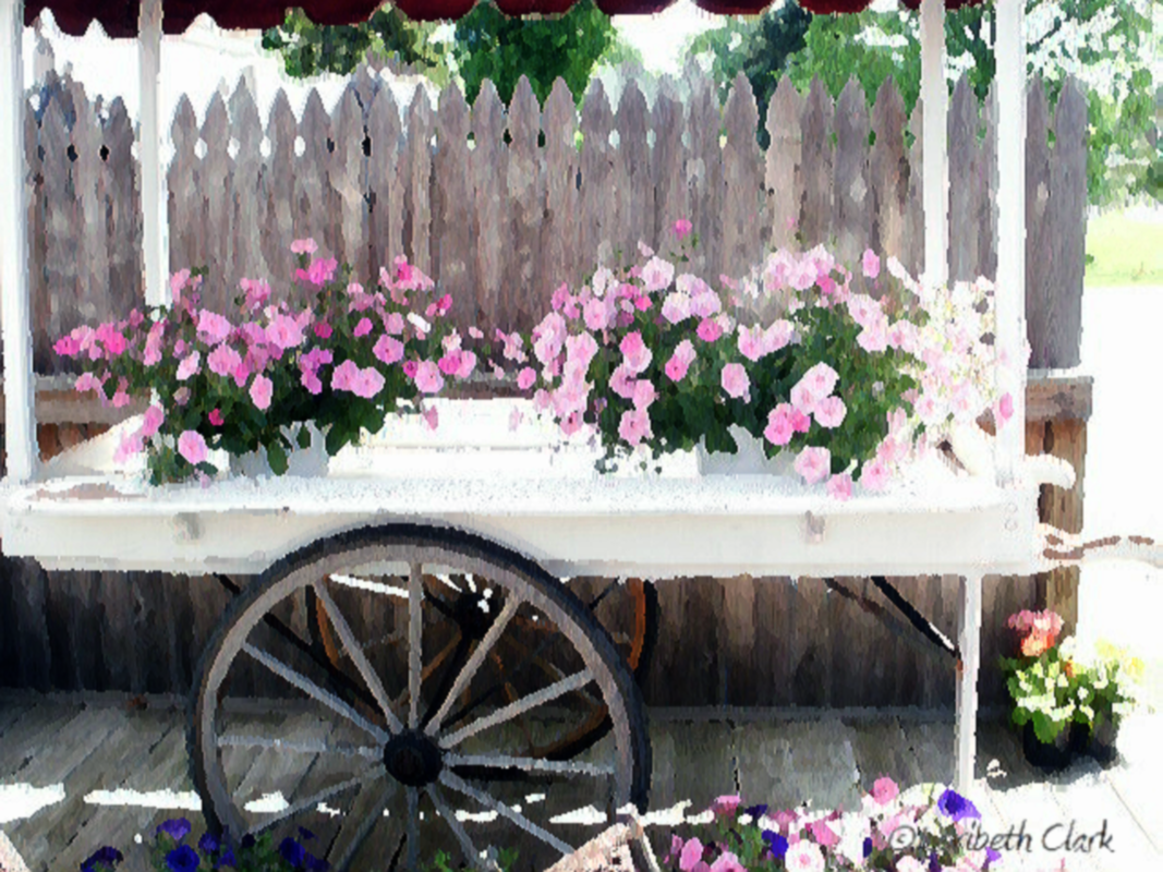 Flower Cart Watercolor ©2013