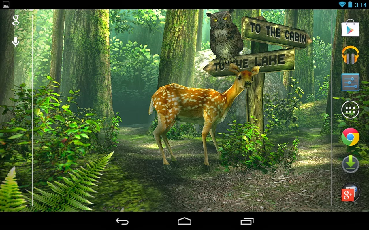 Permalink to Forest Live Wallpaper Apk Pro