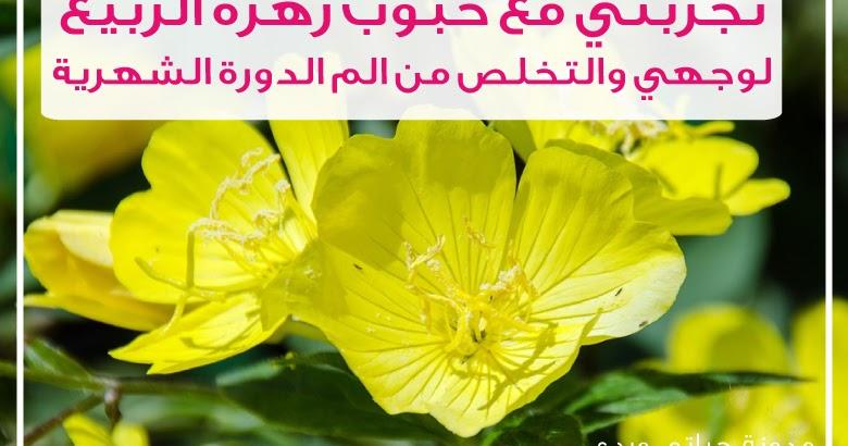 حياتي وردي تجربتي مع حبوب زيت زهرة الربيع المسائية للوجه والم الدورة الشهرية