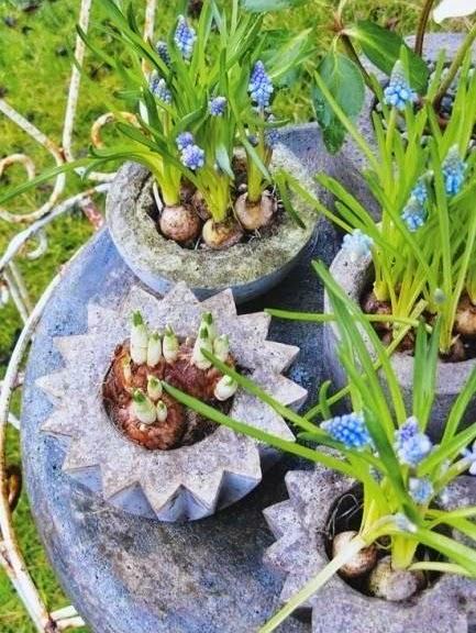 Cara Membuat Kerajinan Tangan Sederhana Yang Mudah - Pot Semen Unik