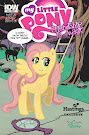 My Little Pony Friendship is Magic #13 Comic Cover Hastings Variant