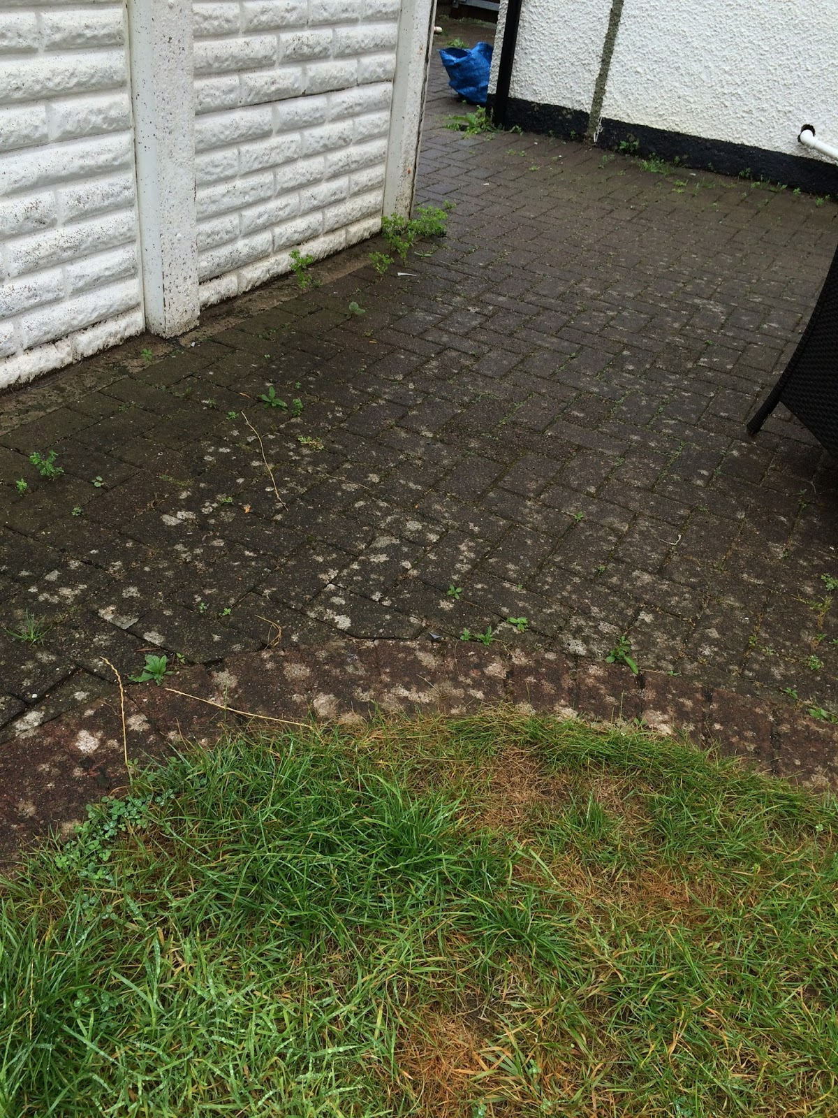 garden clean up - patio area in need of weeding