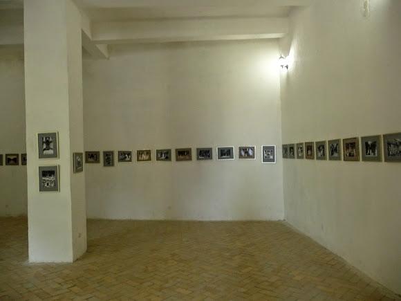 Підгорецький замок. Музей. Історичний зал