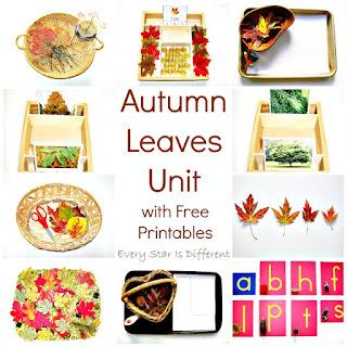 Autumn leaves Unit