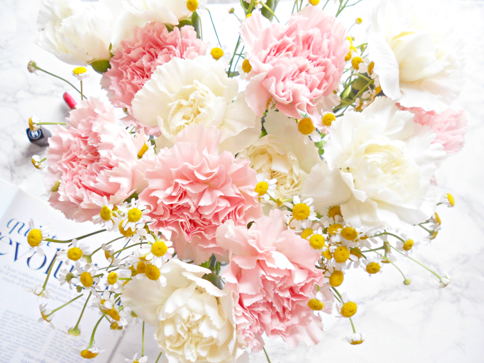 Candyfloss Carnations | Blossoming Gifts
