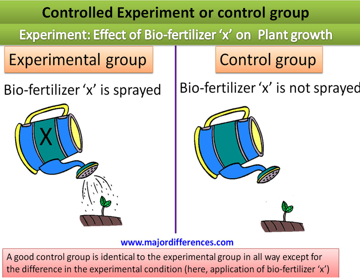 Difference Between Controlled Group And Controlled