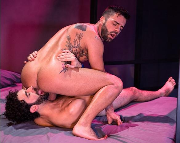 Stallion gay porn