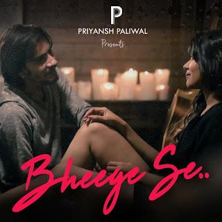 Bheege Se - Priyansh Paliwal (2017)