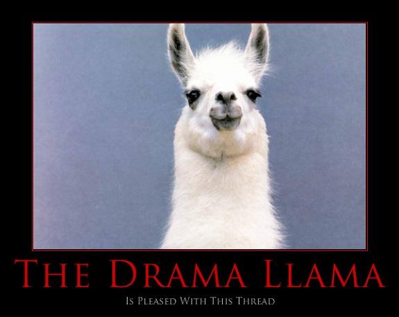 drama+llama.jpg