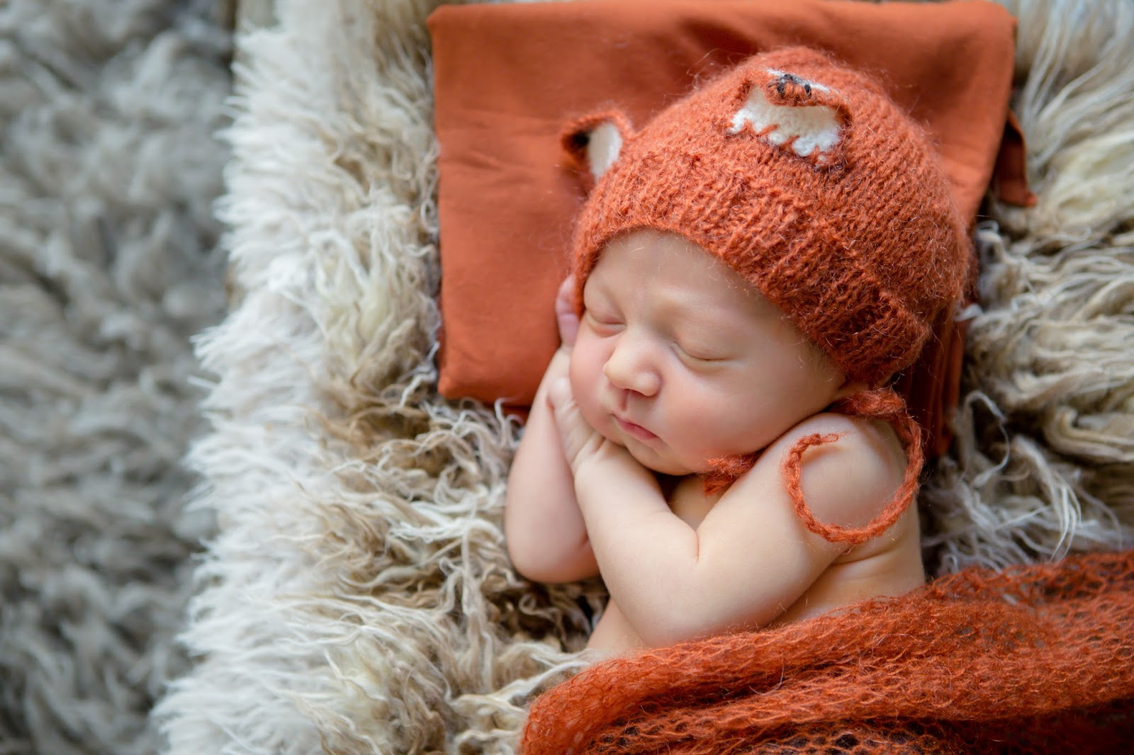 newborn dressed as fox