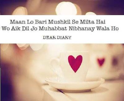 dear diary urdu poetry images