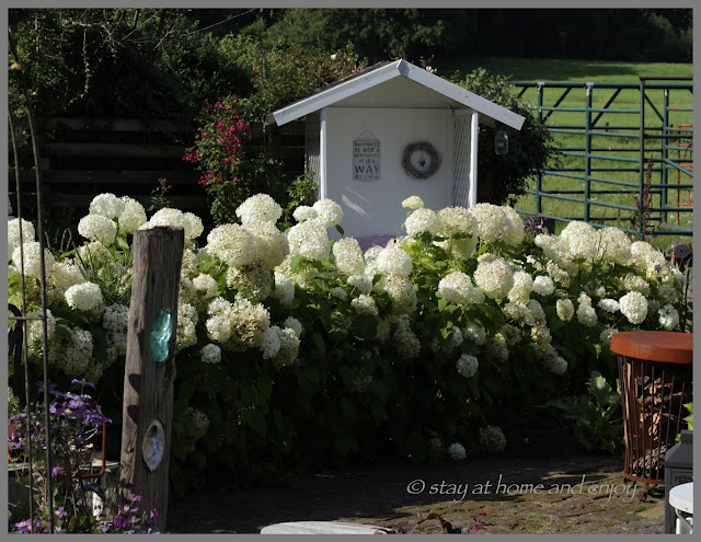 Durch den Garten im August - stay at home and enjoy