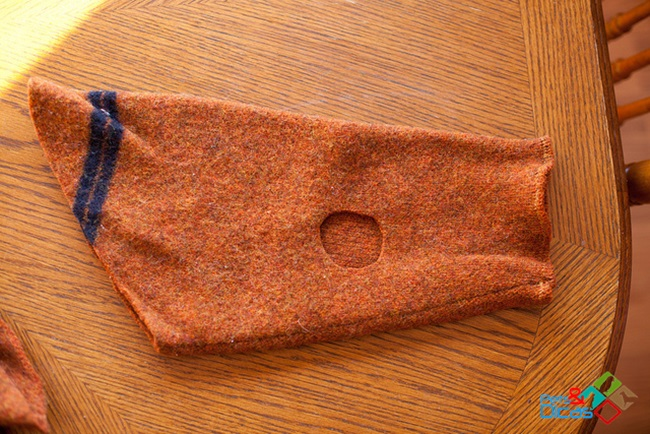 Dicas de Como fazer roupa para cachorro com manga de blusa