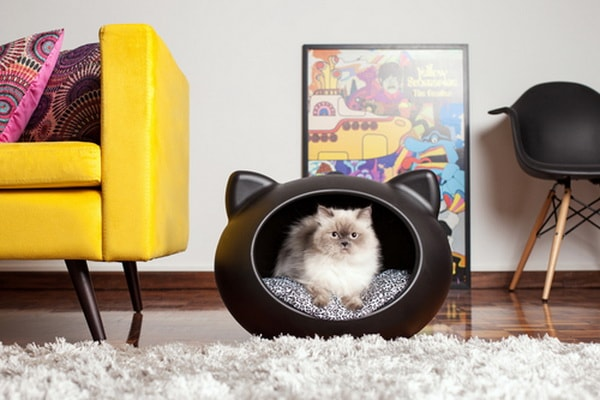 Cute Beds For Pets Combine With Interior Decoration Ideas 13