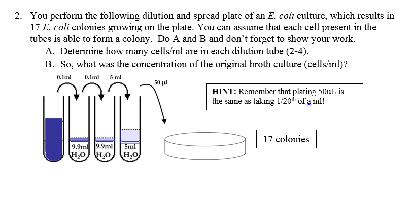 Printables Dilutions Worksheet worksheet davezan dilutions davezan