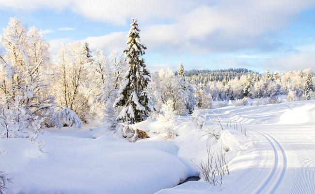 Salju Norwegia