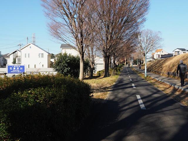 多摩湖自転車道 石神井川