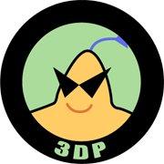 3-dp-chip