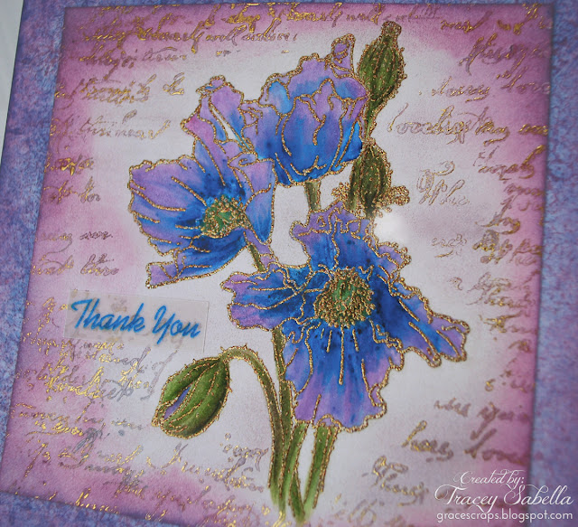 Watercolor Poppy 'Thank You' carc by Tracey Sabella