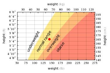Tes Berat dan Tinggi Badan Ideal Pramugari