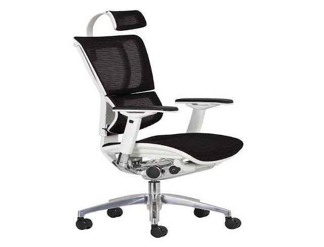 what kind of ergonomic office chair is best