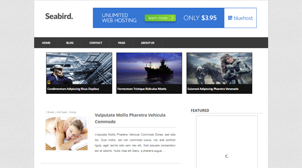 Seabird Blogger Template